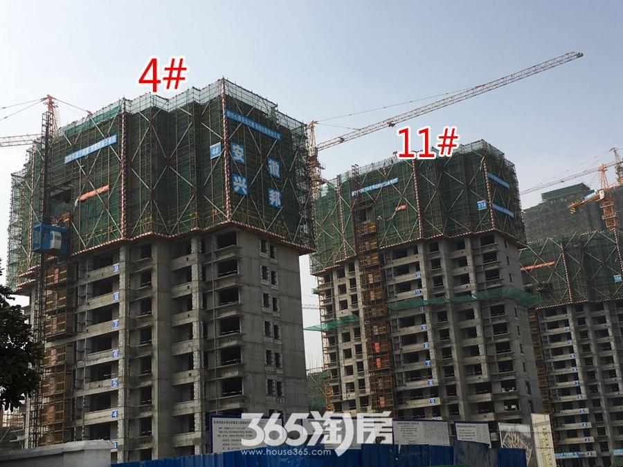 翰林公馆4#、11#楼工程进度图(2018.3摄)