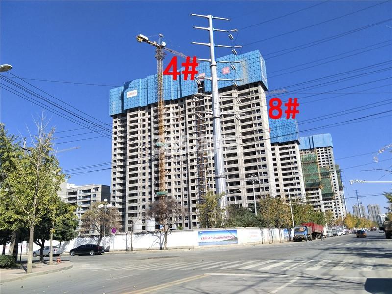 万科新都会4、8#楼施工实景图(10.19)