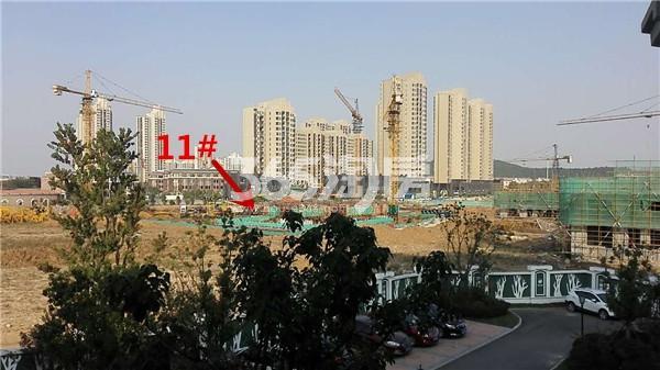 枫林天下康城高层11#楼在建实景图(11.14)