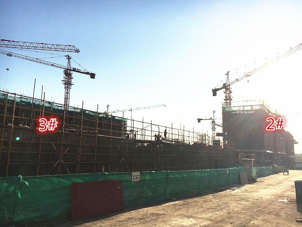 江山薈3、2号楼实景图(11.15)
