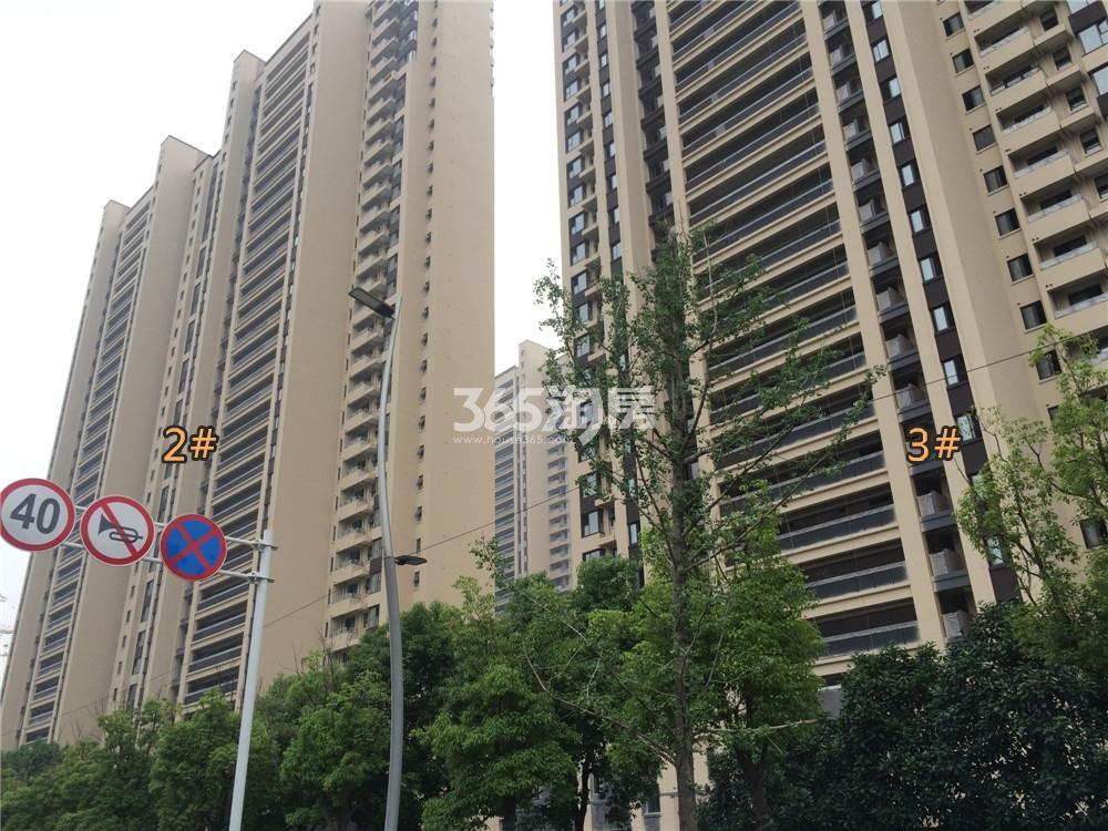 金地中心住宅2、3#在建实景图(5.20)