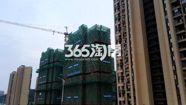世茂东都天城四期工地实景图6(8.14)