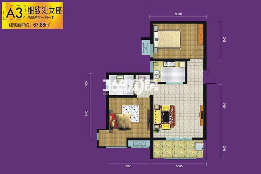 紫园sunny——A3户型图
