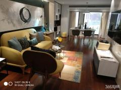 高新 星悦城 4.8米挑高公寓 地铁3号线星火站100米 周边配套齐全