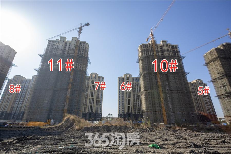 信德悦城5#、6#、7#、8#、10#、11#工程进度(2019.11摄)