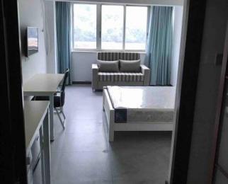 西湖区古荡龙都大厦1室0厅1卫30平米整租精装