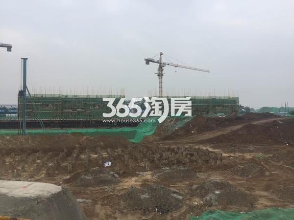 蓝光公园华府施工进度(2017.6.12)