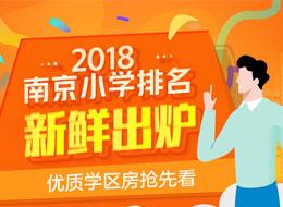 2018南京小学排名