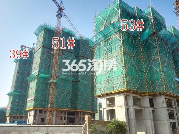 绿地工润和平壹号四期53#、51#、39#工地实景图(9.13)