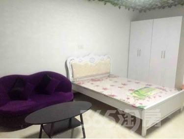 京商商贸城1室1厅1卫50平米整租精装