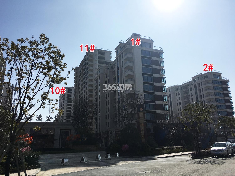 2018年2月底德信海德公园1、2、10、11号楼实景