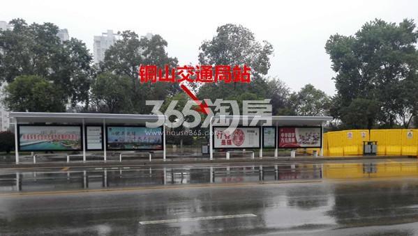 中梁首府周边公交站 铜山交通局站实景图(10.17)