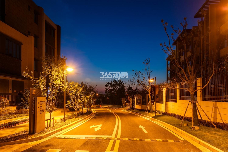 瑞安翠湖山道路夜景(3.14)