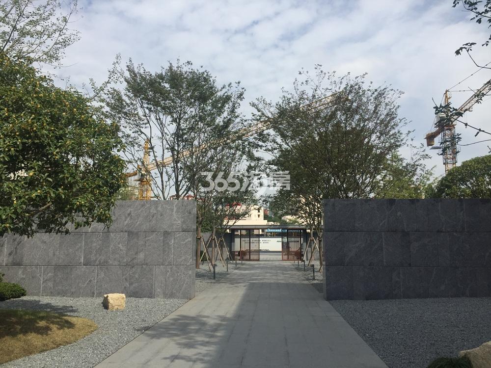 绿城深蓝售楼处实景图(10.17)
