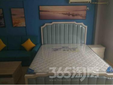 江南新里程1室1厅1卫58平米整租豪华装