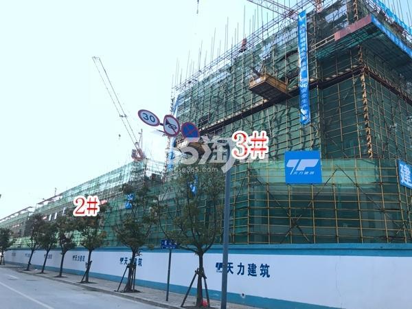 富力运河十号洋房、小高层实景图(2017.11 摄)