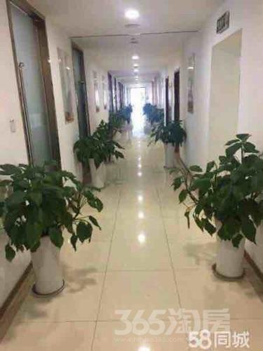 武进吾悦广场115平米整租精装可注册