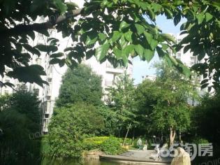 为你而选为你为家 宋都西湖花苑 毛坯三房 满五年 环境优美