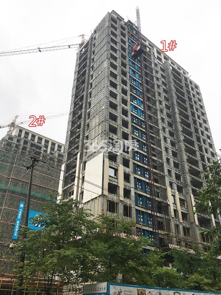 2018年5月31日首开杭州金茂府高层1、2号楼特写