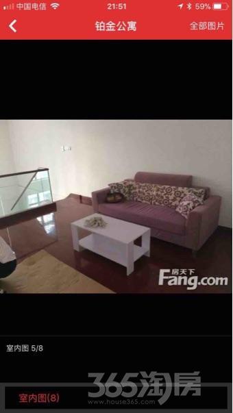 铂金公寓2室2厅2卫110平米整租精装