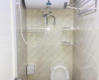 21世纪国际公寓1室1厅1卫50平米合租精装