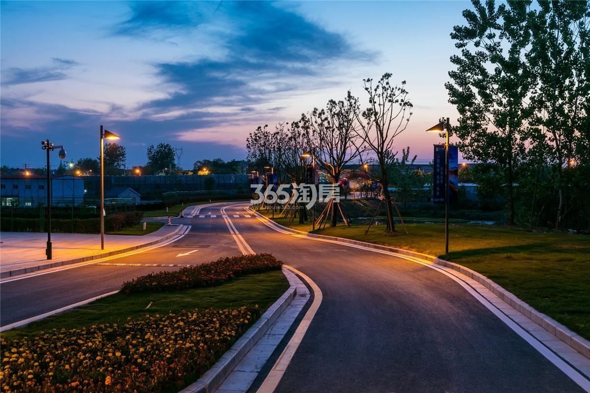 瑞安翠湖山道路夜景(9.10)