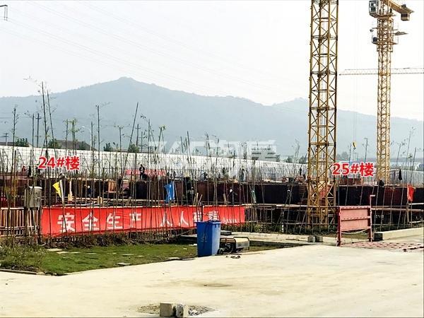 新力帝泊湾24#、25#楼工程进度实景(2017.11摄)