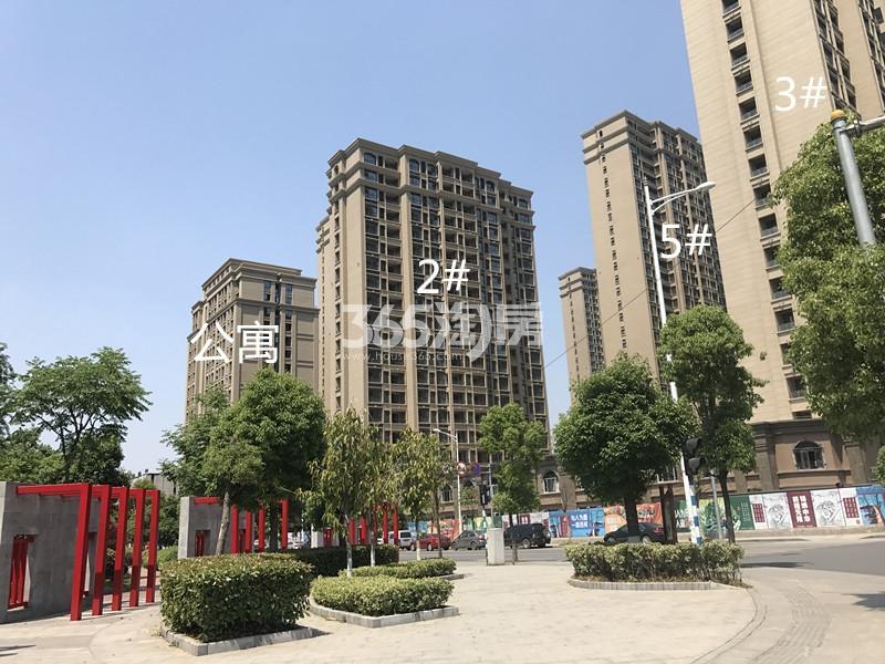 中电颐和府邸2、5号楼进展图(10.20)