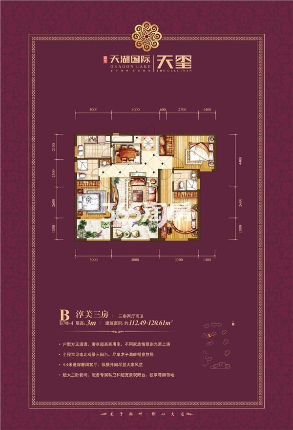 天湖国际户型图B7-4