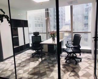 新街口大行宫地铁口豪华装带家具电梯口户型正采光好带车