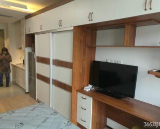 雨花客厅1室1厅1卫37㎡整租豪华装