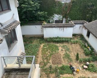 中国人家玉鉴园5室3厅4卫351.47平米整租毛坯