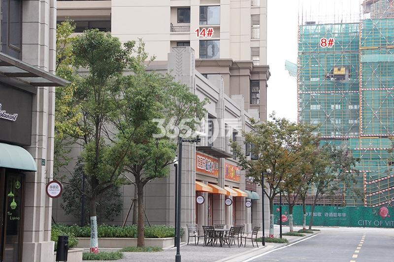 雅居乐国际花园14、8号楼实景图(2017.11)