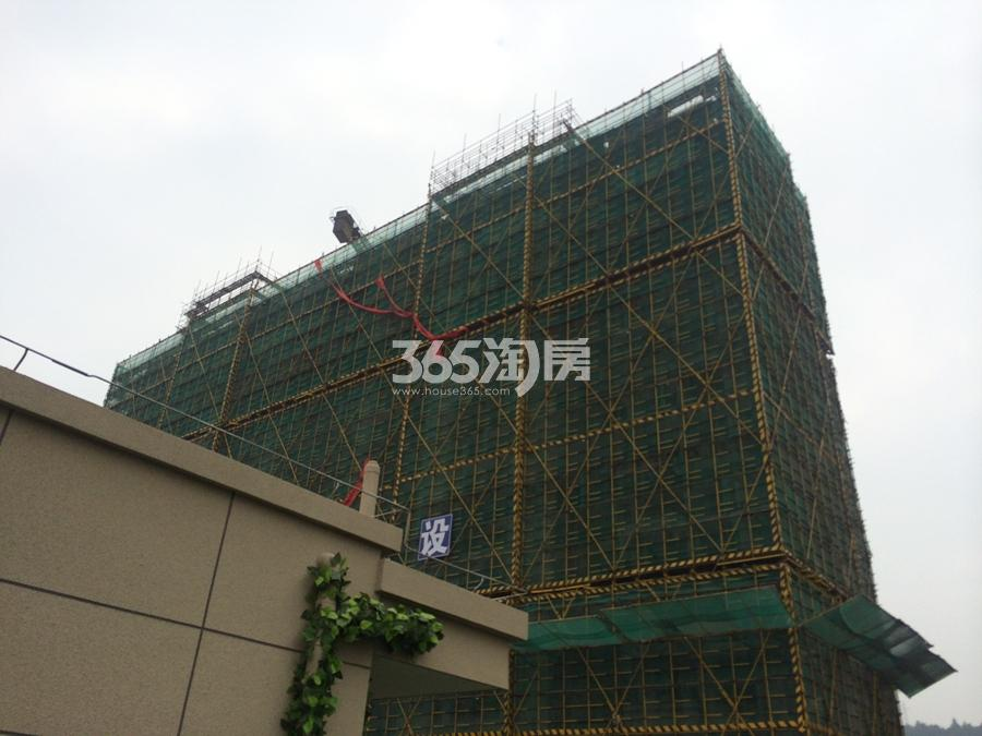 碧桂园东旭府实景图