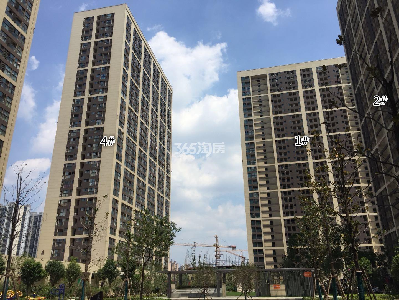 东方万汇城南区1、2、4号楼实景图(7.26)