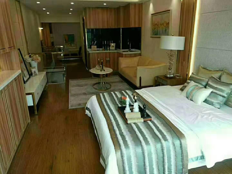 鼎鑫中心 四里河中心商务区 45-71平五米高挑小户型公寓