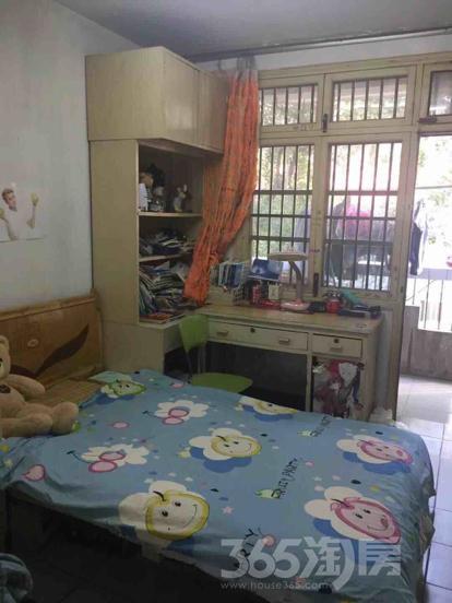 琥珀南村2室1厅1卫70平米整租中装