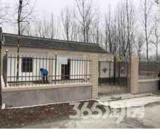 西袁村3室2厅1卫200平米整租精装