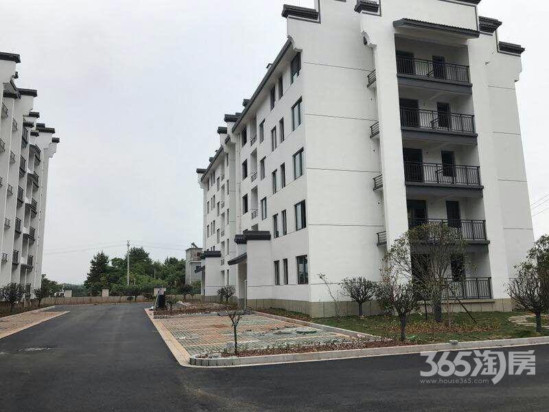 杭州建德大慈岩景区70年产权精装总价19.8万起住宅不限购