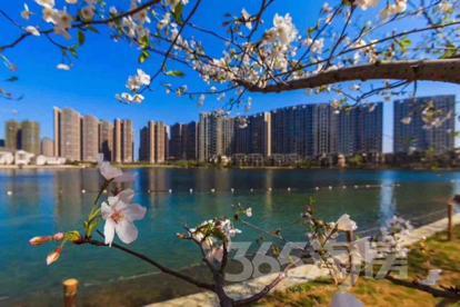 世界旅游名城广西桂林无限购