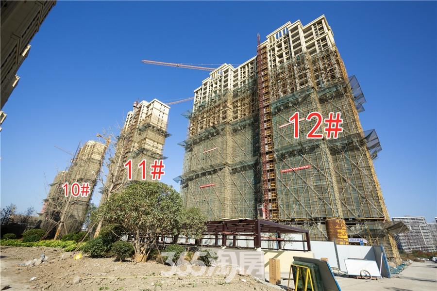 信德悦城10#、11#、12#工程进度(2019.11摄)