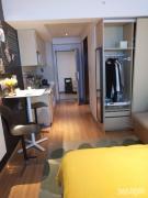 江苏软件园 4站地铁到南京南 挑高公寓 精装修拎包入住有优惠