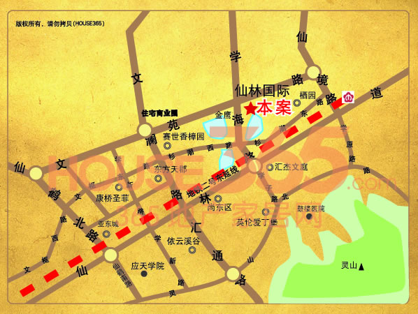 仙林国际交通图