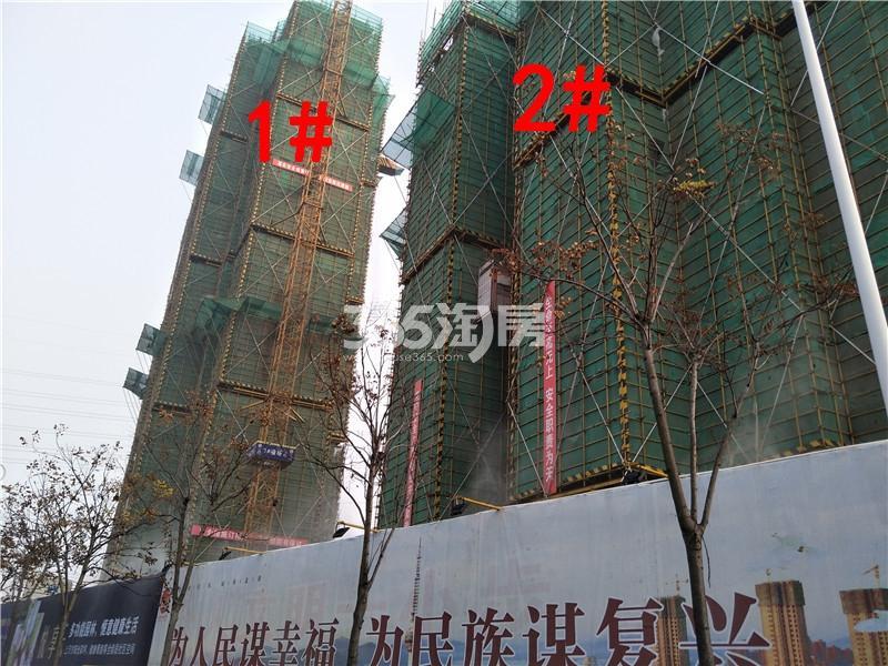 珍宝岛熙悦府在建1、2#楼实景图(11.29)