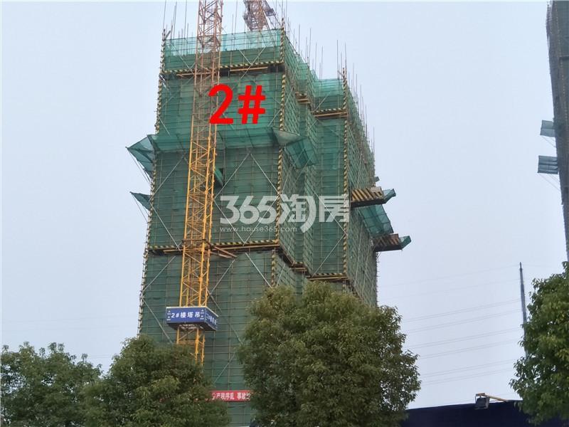 珍宝岛熙悦府在建2#楼实景图(11.29)