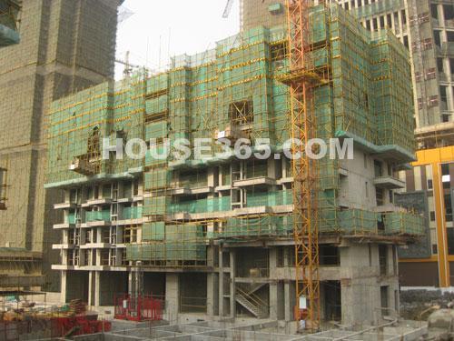10#楼建至11层