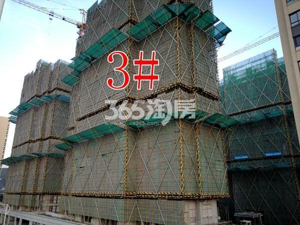 世茂东都天城3#工地实景图(3.14)