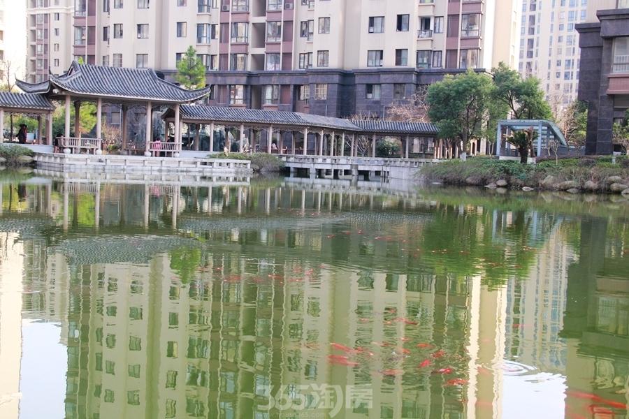 三潭音悦庭院实景图(2018.3摄)