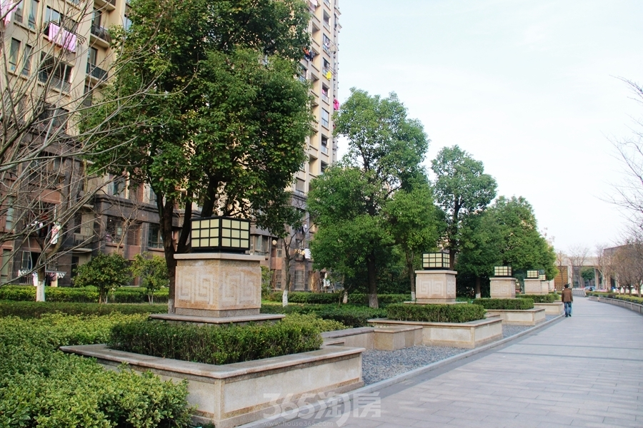 三潭音悦园林实景图-绿化(2018.3摄)