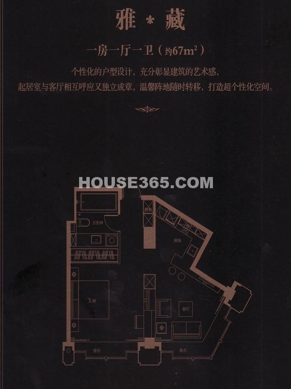 雅藏-一房一厅一卫(约67㎡)